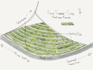 Edmonton River Valley Food Forest Concept in Mackinnon Ravine.