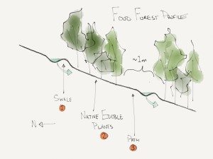 Profile of Edmonton River Valley Food Forest