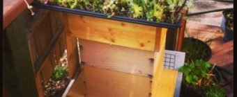 Edmonton Urban Beehive with Green Roof