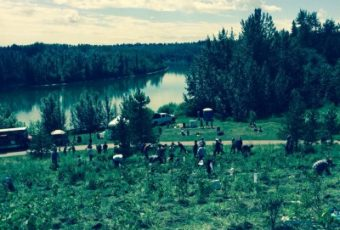 Edmonton Food Forest Expansion 2015
