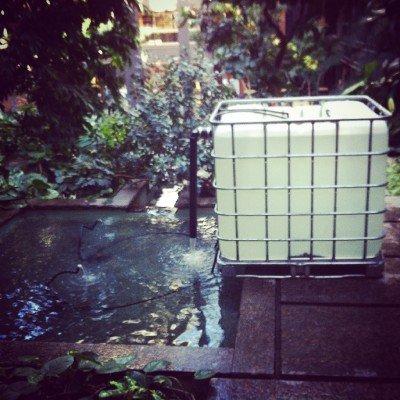 Building a pond aquarium biofilter dustin bajer for Pond biofilter design