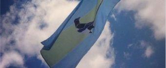 Edmonton Flag redesign. YEGpie flag, magpie