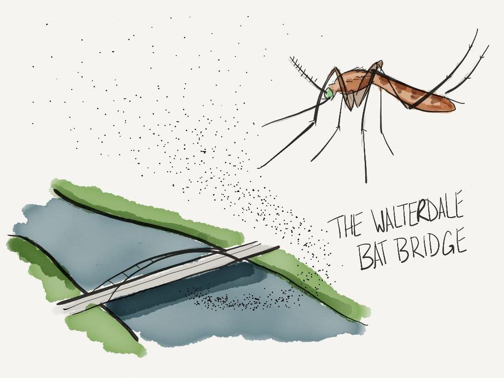 Edmonton Waterdale Bridge, Bat Bridge, Biophilic Design