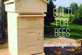 Order A Handmade 8 Frame Medium Beehive for The 2017 Season