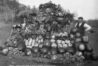 What Grows Here? Edmonton's Surprising History of Horticultural Innovation