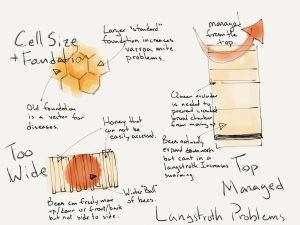 Langstroth Hive, Problems, Natural Beekeeping,