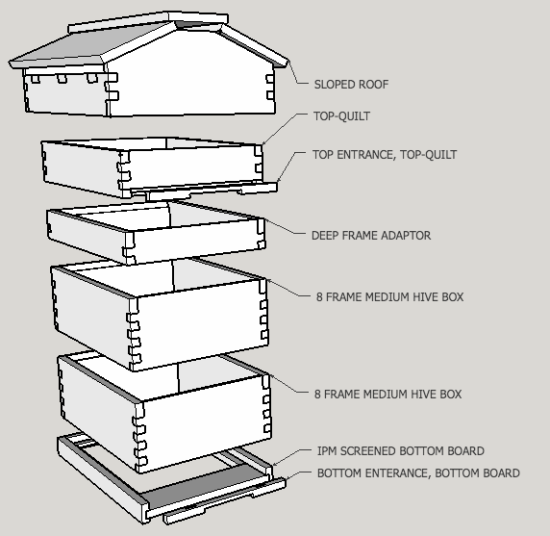 Google Sketchup breakdown of a modified warre hive, 8 frame hive, top bar hive design.