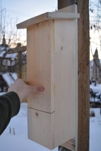 Side view of an Alberta bat box. The design is similar to a tradition bat box wrapped around a central column. Sloped roof sheds water, the front features a ventilation groove, and the landing board is textured for grip.