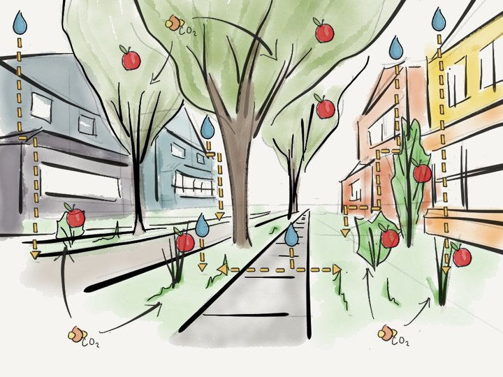 Biophilic city street that stores water, nutrients, co2 and produces food.