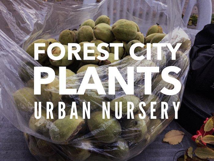 Forest City Plants Urban Nursery, Edmonton, Alberta